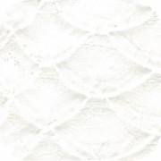 anakonda-1022-01
